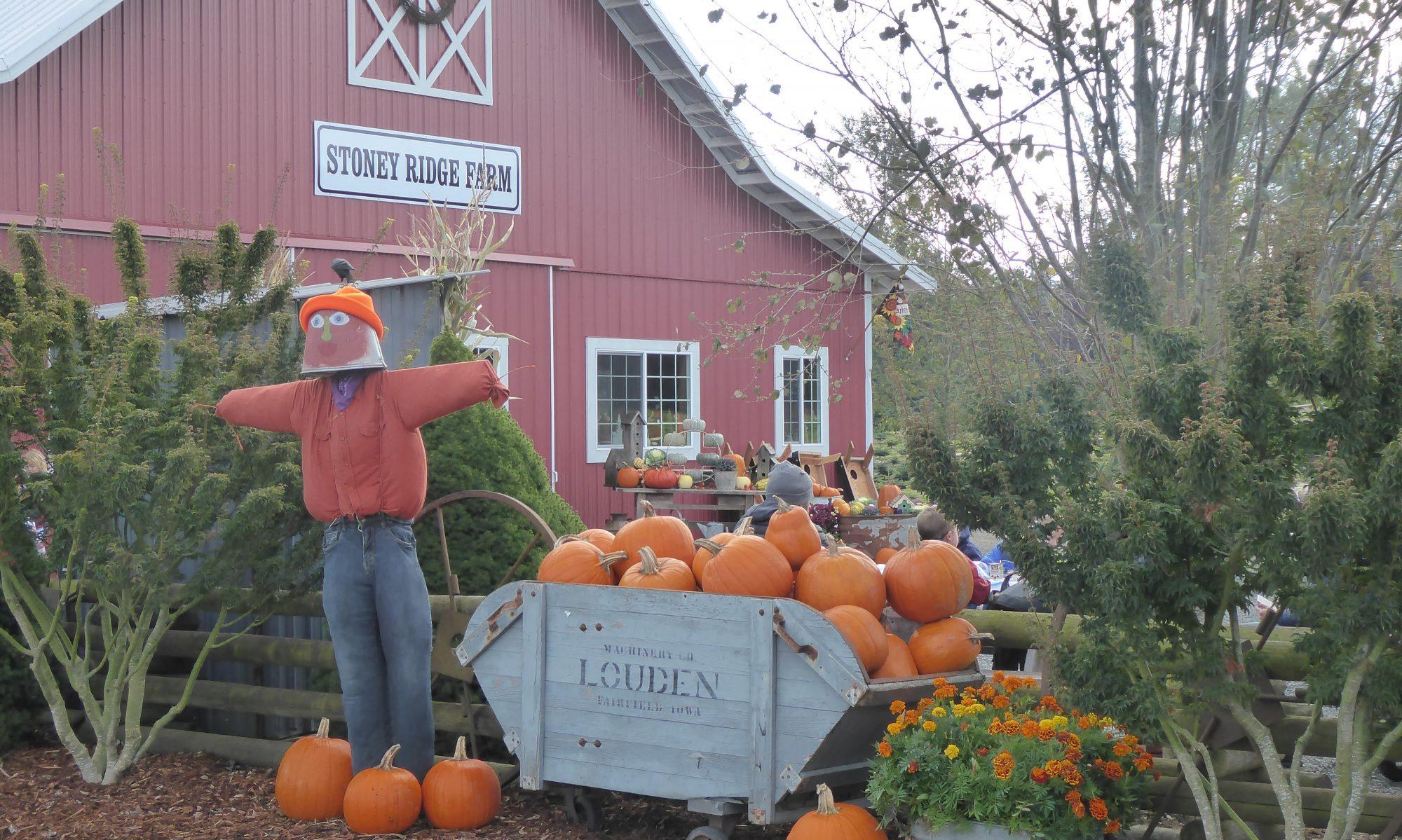 Stoney Ridge Farm